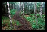 Acadia great head trail 09L