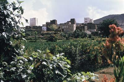 Taif Village