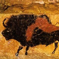 The Great Cieling Bull of Lascaux