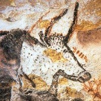 The wall horned bull of Lascaux